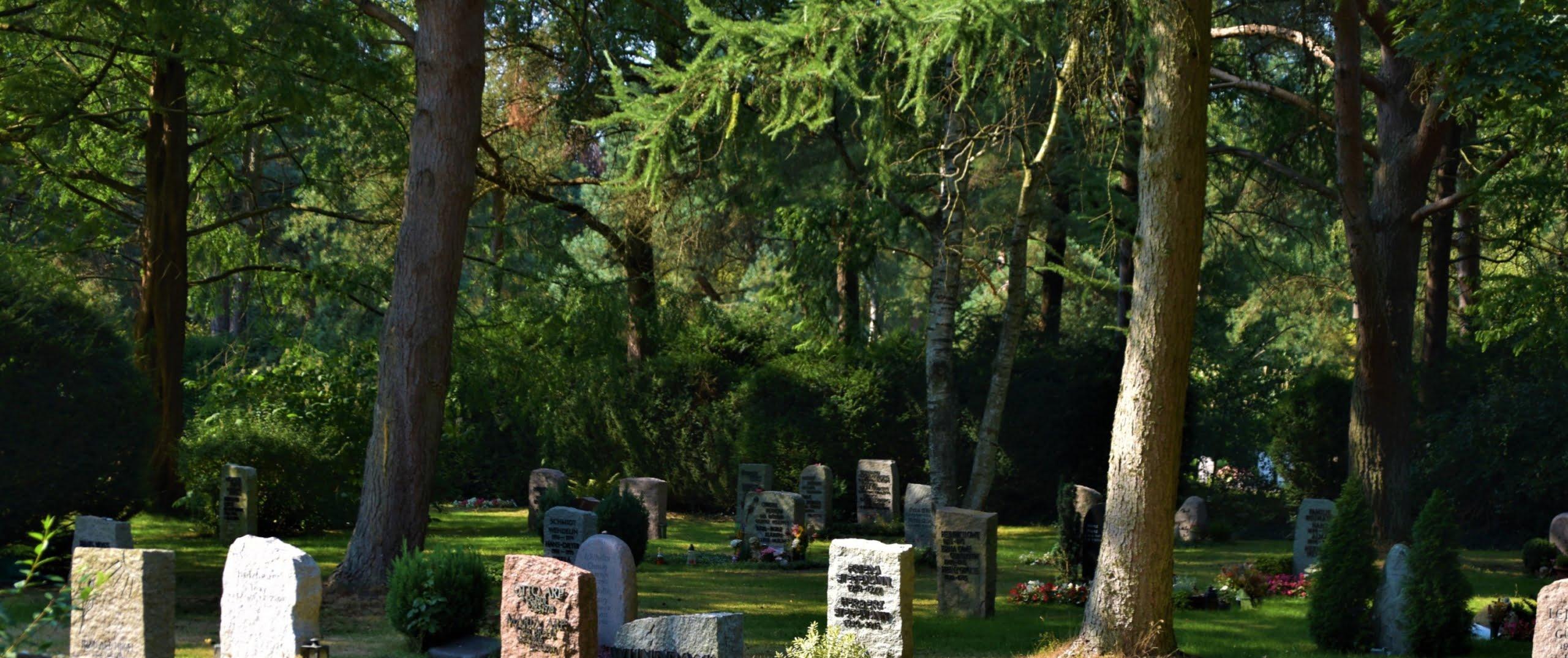 Rudolf Henke: Bundesförderung für Aachener Friedhofsflächen von fast 630.000 Euro